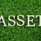 Intangible and Tangible Assets - Complete Controller