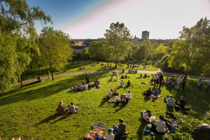 the rest of the people in Sweden are in Stockholm, center city, evening, green grass in the Park, picnic on the lawn